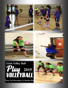 Girls Volleyball Pics 2015 CC